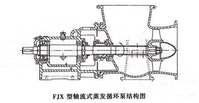 FJX蒸发强制循环泵结构图